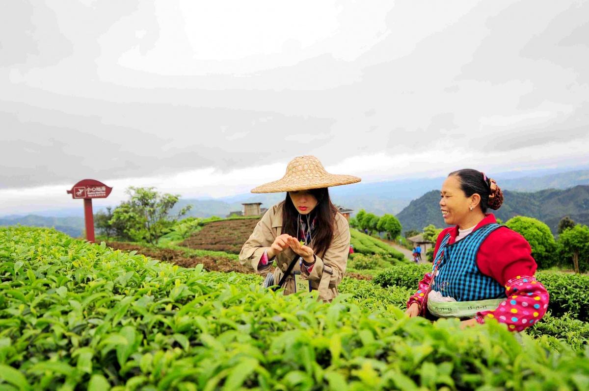 """20年,柳州实现了从""""酸雨之都""""到""""旅游新城""""的蜕变"""