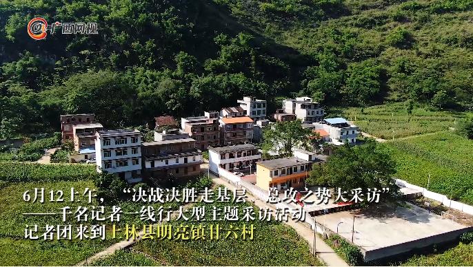 """上林甘六村:""""星级党组织""""引领脱贫路"""