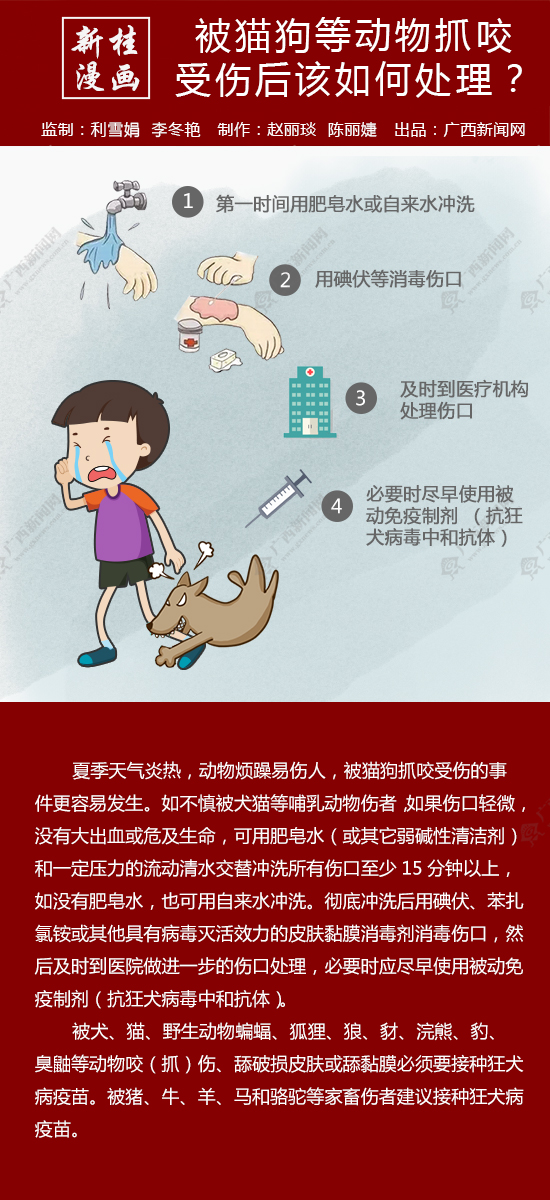 【新桂漫画】被动物抓咬伤后怎么办