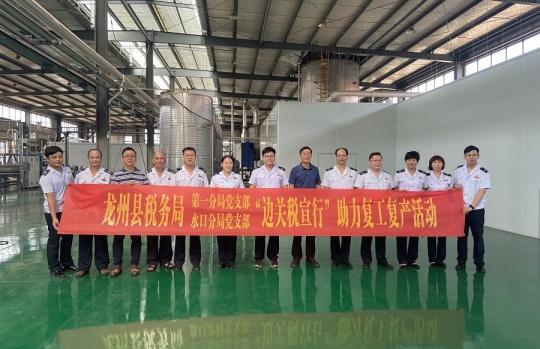 """龙州县税务局开展主题党日""""五个一""""系列活动"""
