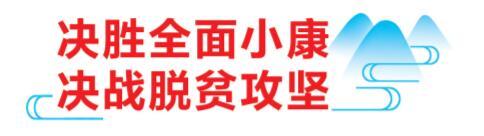 """""""公司+合作社+贫困户+基地"""" 凤山借""""东风""""提升""""造血""""能力"""
