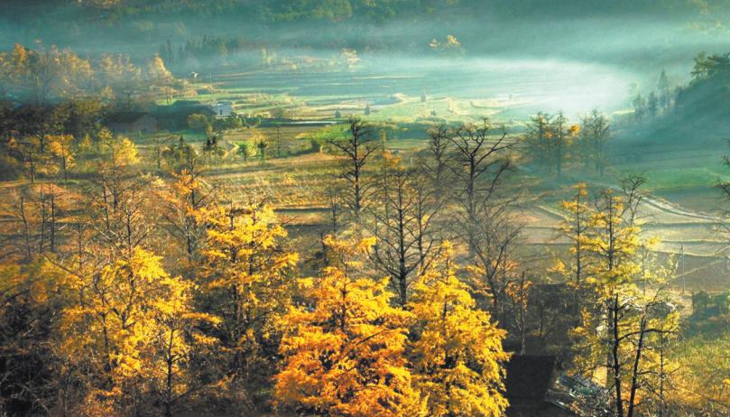 11月14日焦點圖:廣西4地上榜中國旅游百強縣