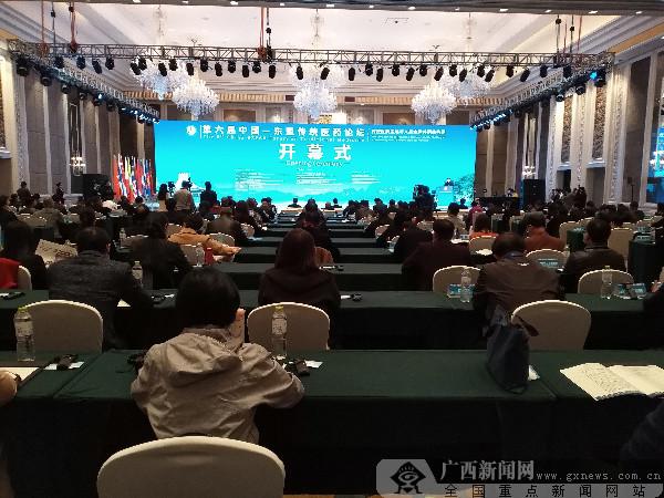 第六届中国-东盟传统医药论坛在广西桂林成功举办