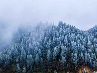 入冬桂北披银装