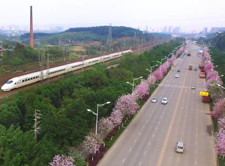 又一重要铁路工程开工 广西一个市将迎交通新格局