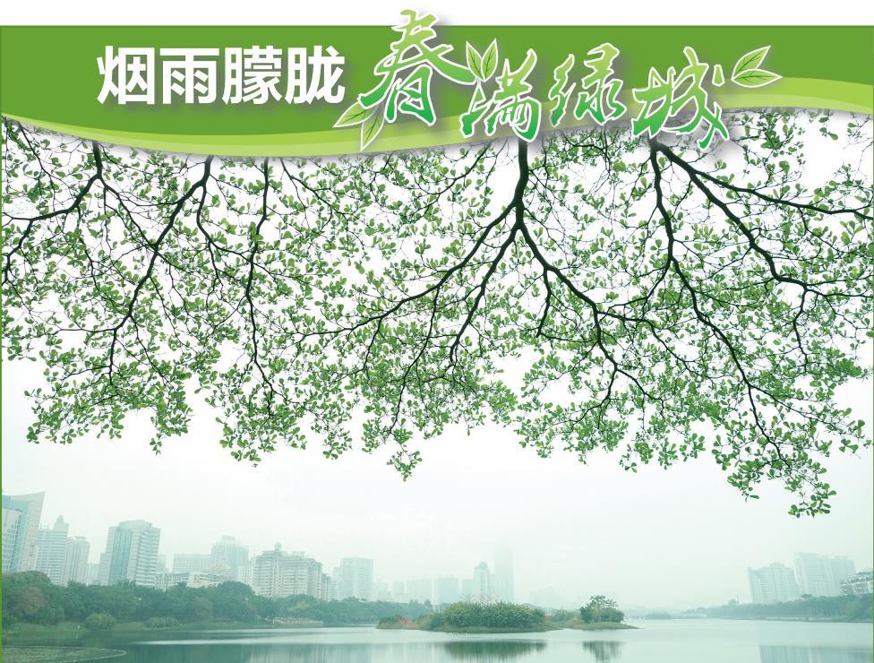 高清图集:草木争春花满城