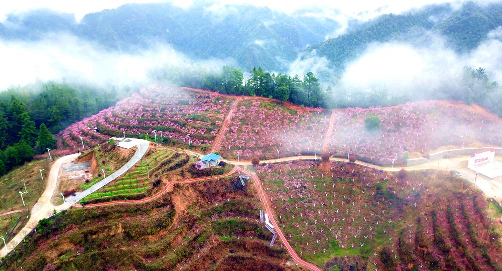 桂林:花样经济别样红火(组图)