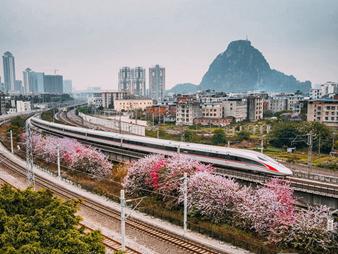 6月25日起全國鐵路調圖 廣西首開直達廈門動車