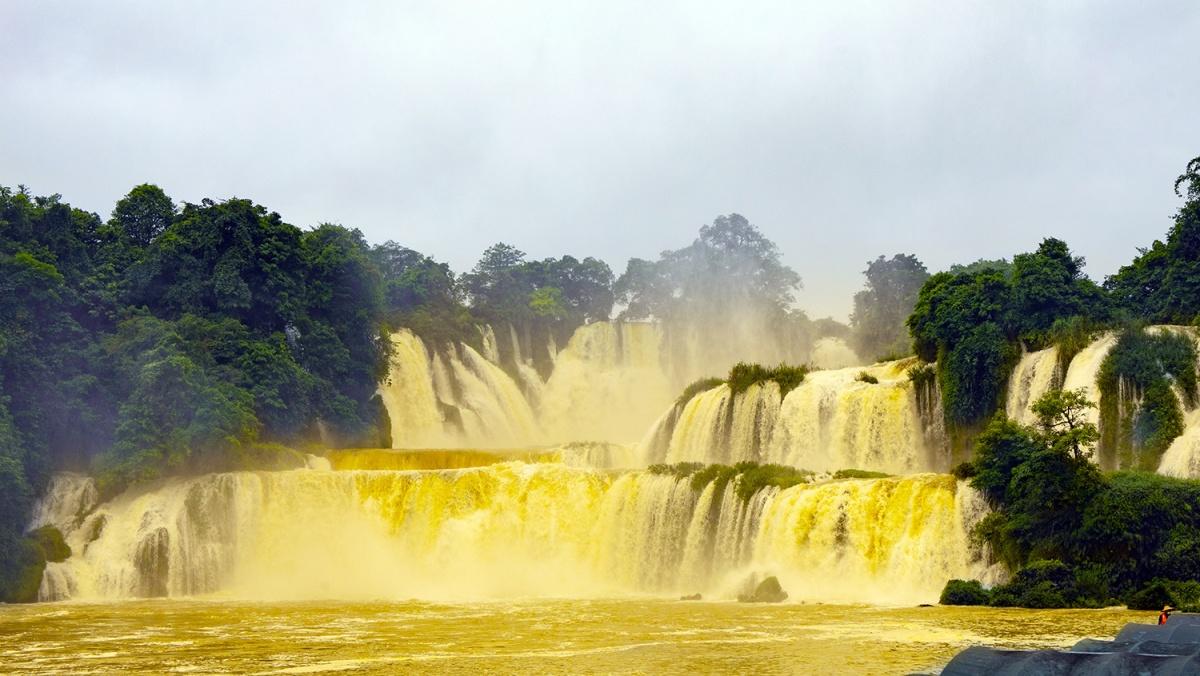 """河水陡涨,德天瀑布变身""""黄金瀑布"""""""