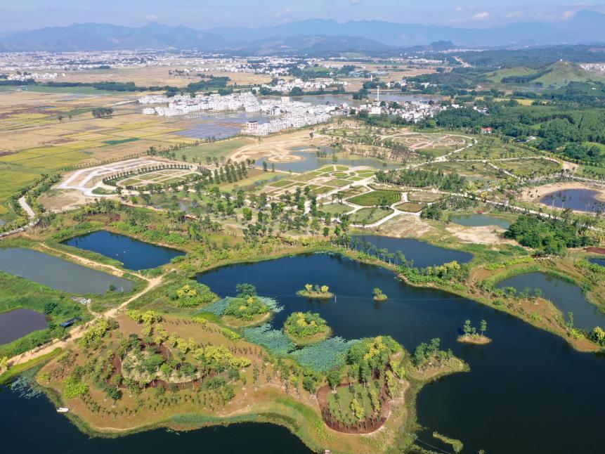 天天娱乐,天天娱乐大厅:宾阳:湿地公园生态美