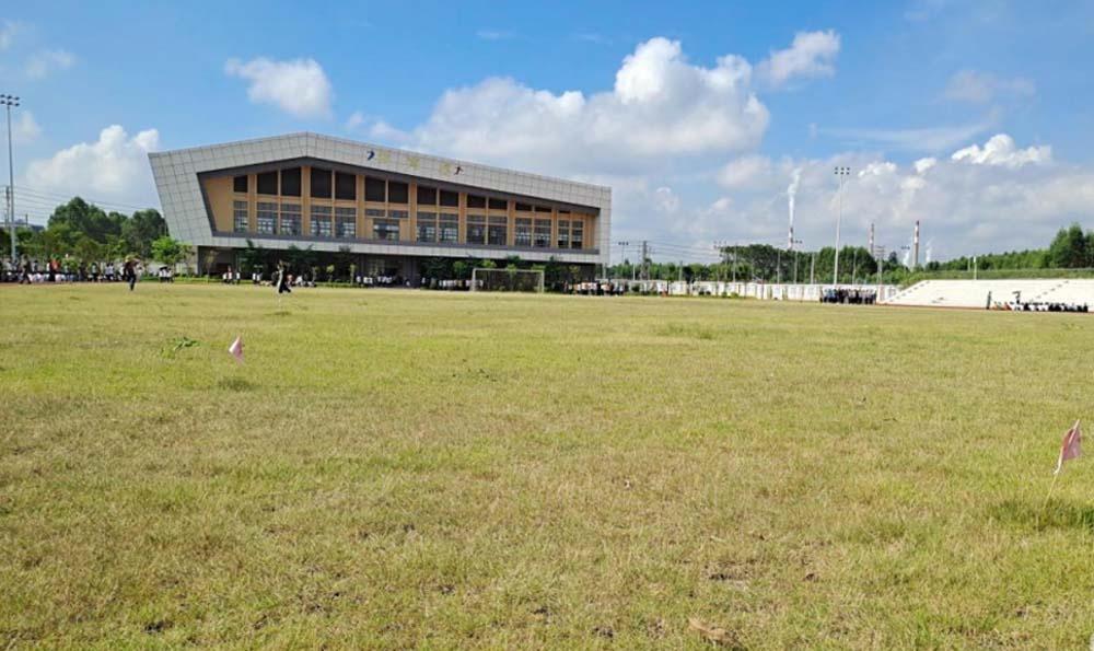 【问政广西】来宾一中学校园发现红火蚁 校方回应已采取措施